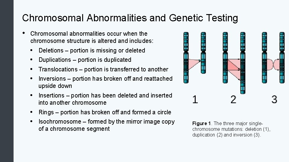 Chromosomal Abnormalities and Genetic Testing • Chromosomal abnormalities occur when the chromosome structure is