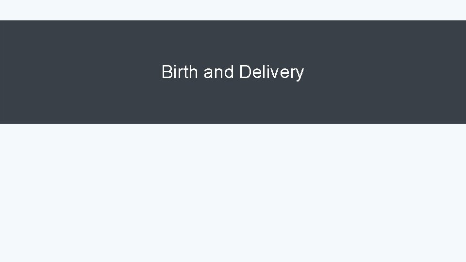 Birth and Delivery
