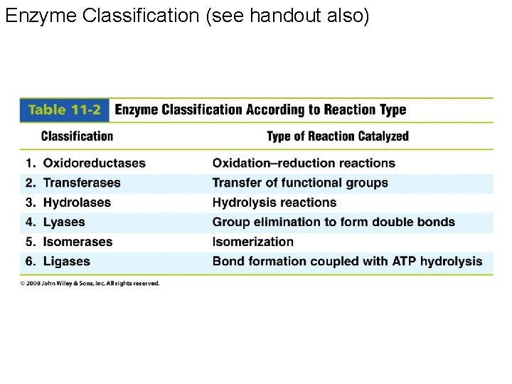 Enzyme Classification (see handout also)