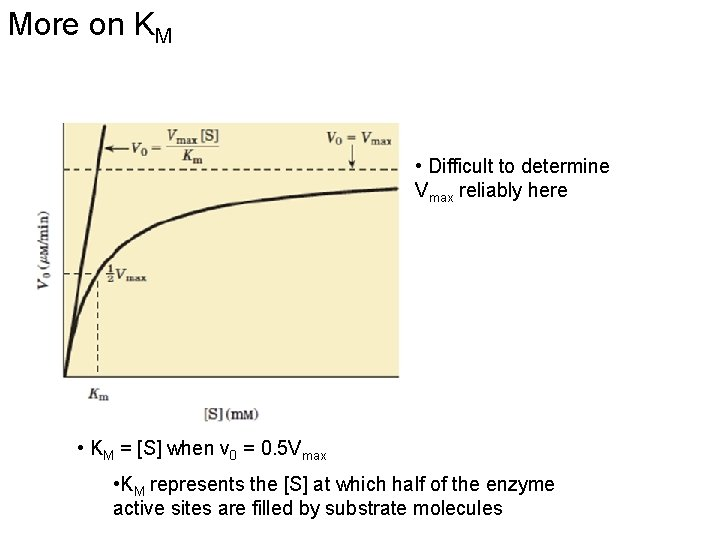 More on KM • Difficult to determine Vmax reliably here • KM = [S]