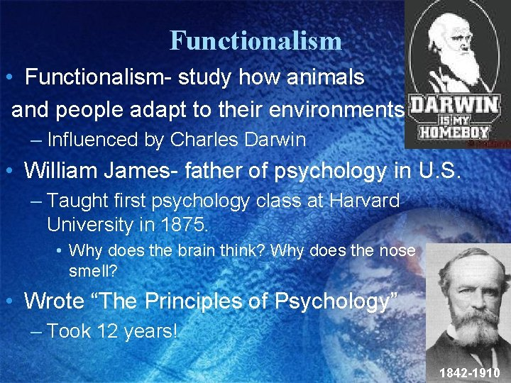 Functionalism • Functionalism- study how animals and people adapt to their environments. . –