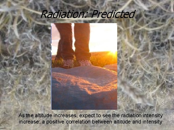Radiation: Predicted As the altitude increases, expect to see the radiation intensity increase; a