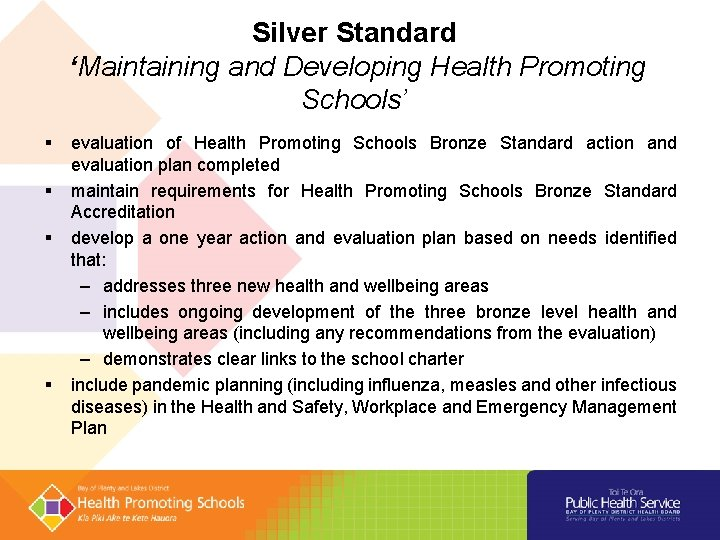 Silver Standard 'Maintaining and Developing Health Promoting Schools' evaluation of Health Promoting Schools Bronze