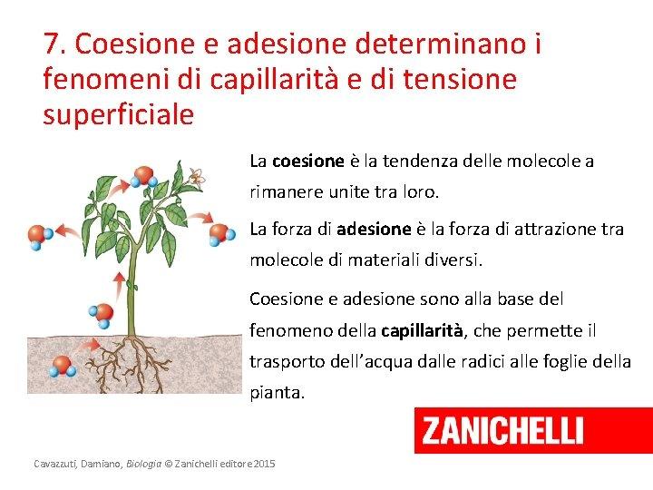 7. Coesione e adesione determinano i fenomeni di capillarità e di tensione superficiale La