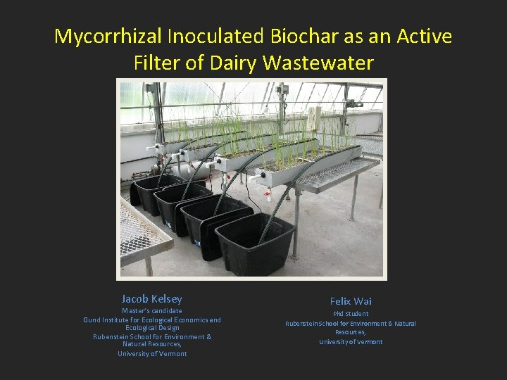 Mycorrhizal Inoculated Biochar as an Active Filter of Dairy Wastewater Jacob Kelsey Master's candidate