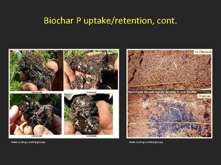 Biochar P uptake/retention, cont. www. d. yimg. com/kq/groups