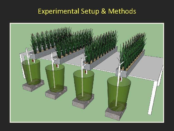 Experimental Setup & Methods