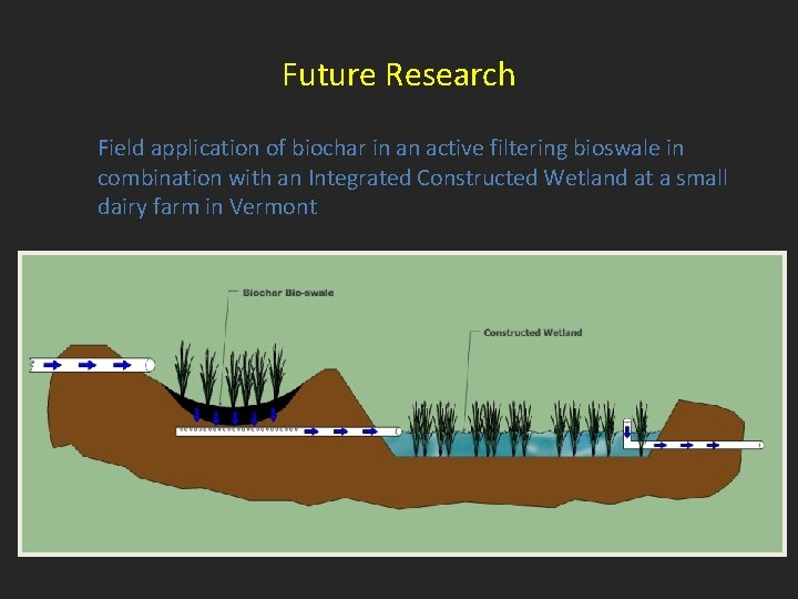 Future Research Field application of biochar in an active filtering bioswale in combination with