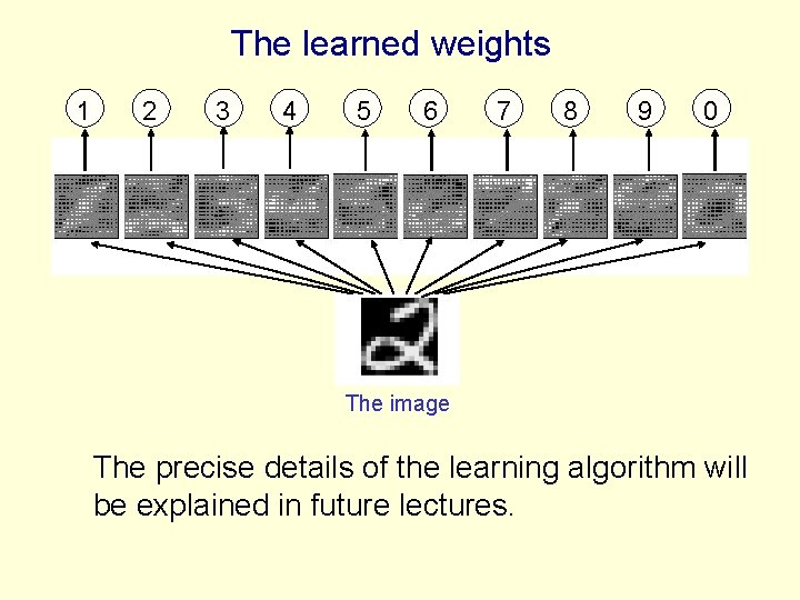 The learned weights 1 2 3 4 5 6 7 8 9 0 The