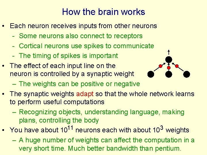 How the brain works • Each neuron receives inputs from other neurons - Some
