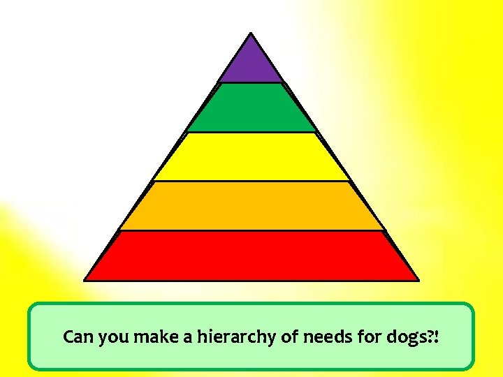 SA Esteem Love/Belonging Safety Physiological Can you make a hierarchy of needs for dogs?
