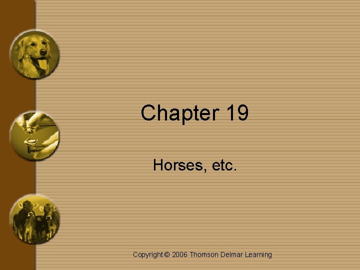 Chapter 19 Horses, etc. Copyright © 2006 Thomson Delmar Learning
