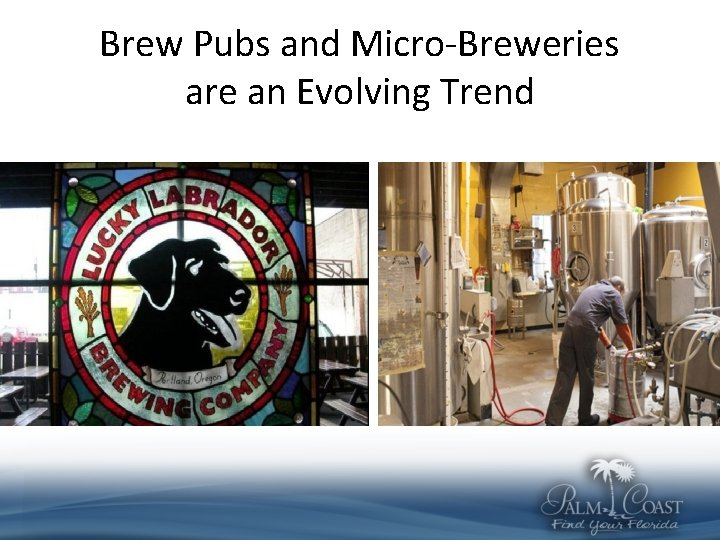 Brew Pubs and Micro-Breweries are an Evolving Trend