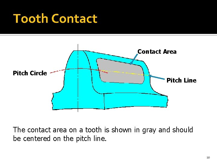Tooth Contact Area Pitch Circle Pitch Line The contact area on a tooth is