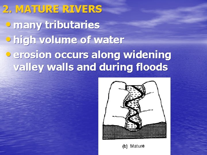 2. MATURE RIVERS • many tributaries • high volume of water • erosion occurs