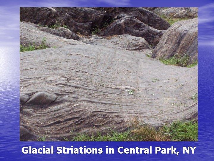 Glacial Striations in Central Park, NY