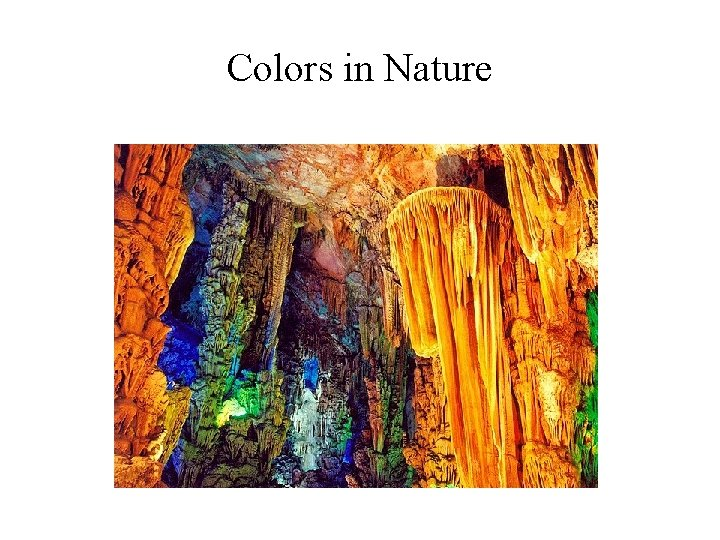 Colors in Nature