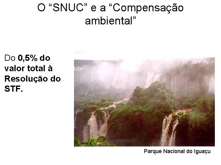 """O """"SNUC"""" e a """"Compensação ambiental"""" Do 0, 5% do valor total à Resolução"""