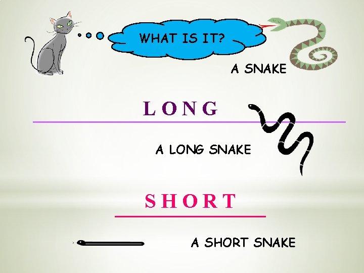 WHAT IS IT? A SNAKE LONG A LONG SNAKE SHORT A SHORT SNAKE