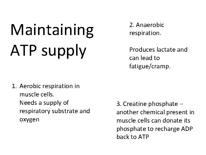 Maintaining ATP supply 1. Aerobic respiration in muscle cells. Needs a supply of respiratory