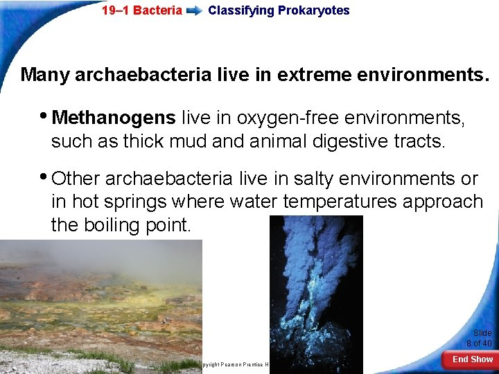 19– 1 Bacteria Classifying Prokaryotes Many archaebacteria live in extreme environments. • Methanogens live
