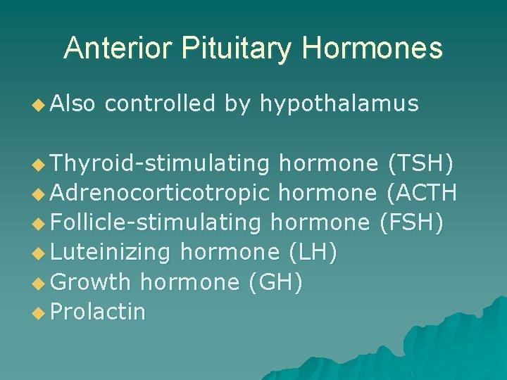 Anterior Pituitary Hormones u Also controlled by hypothalamus u Thyroid-stimulating hormone (TSH) u Adrenocorticotropic