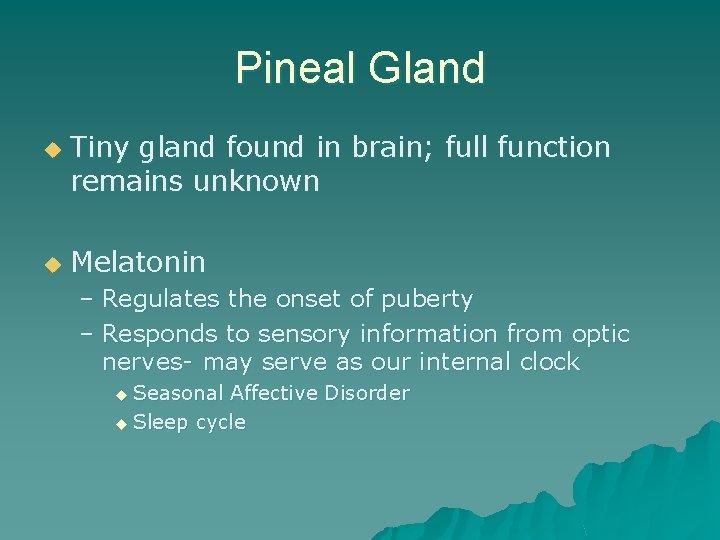 Pineal Gland u u Tiny gland found in brain; full function remains unknown Melatonin