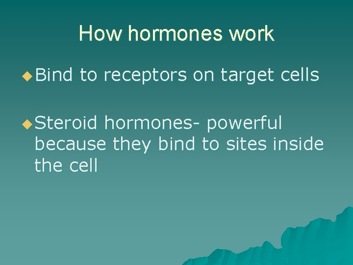 How hormones work u Bind to receptors on target cells u Steroid hormones- powerful