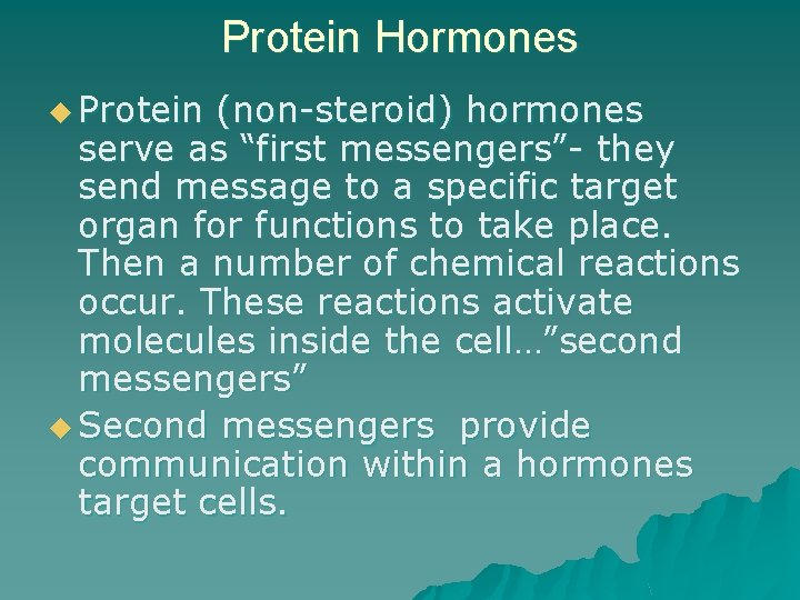 """Protein Hormones u Protein (non-steroid) hormones serve as """"first messengers""""- they send message to"""