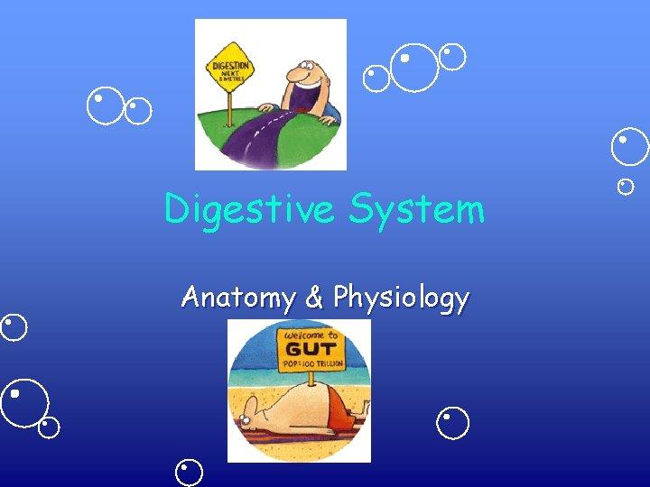 Digestive System Anatomy & Physiology