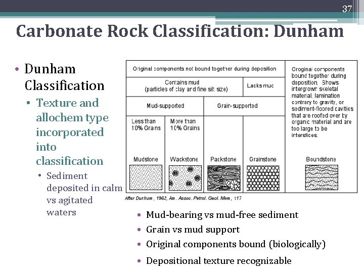 37 Carbonate Rock Classification: Dunham • Dunham Classification • Texture and allochem type incorporated