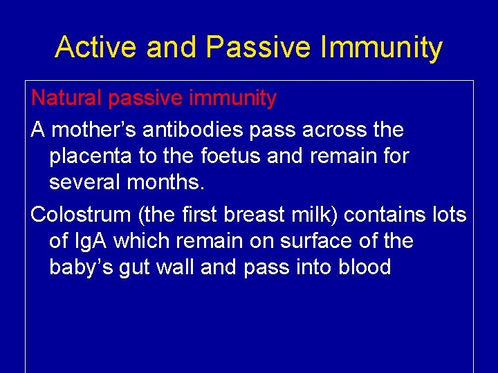 Active and Passive Immunity Natural passive immunity A mother's antibodies pass across the placenta