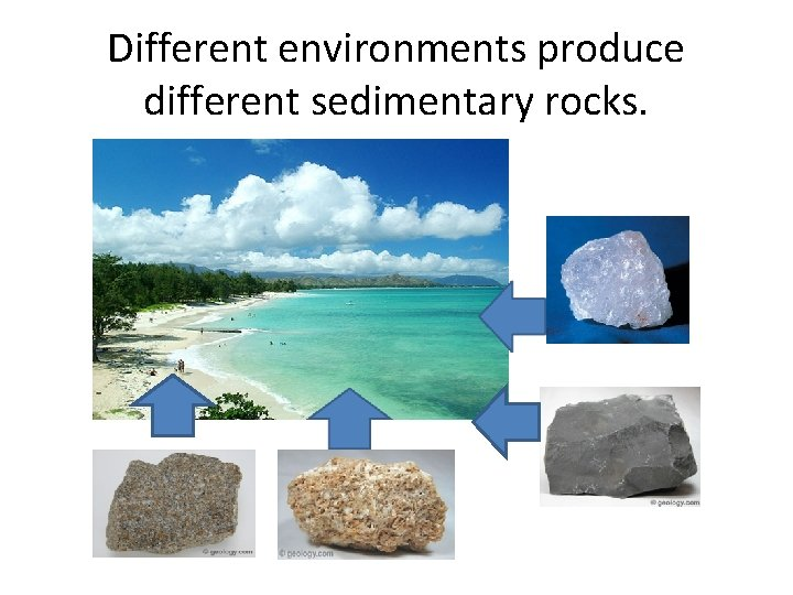 Different environments produce different sedimentary rocks.