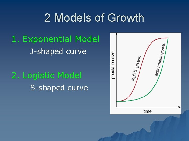 2 Models of Growth 1. Exponential Model J-shaped curve 2. Logistic Model S-shaped curve