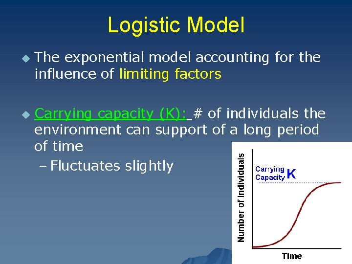 Logistic Model u u The exponential model accounting for the influence of limiting factors