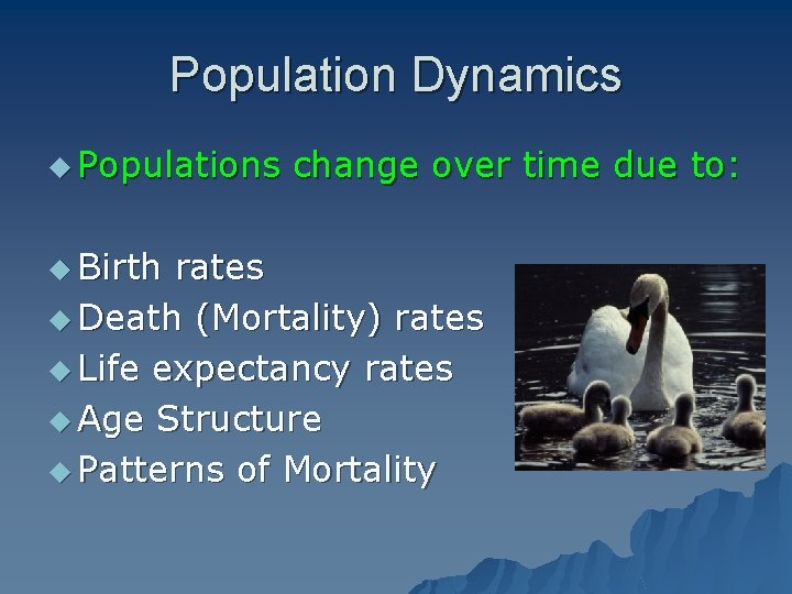 Population Dynamics u Populations u Birth change over time due to: rates u Death