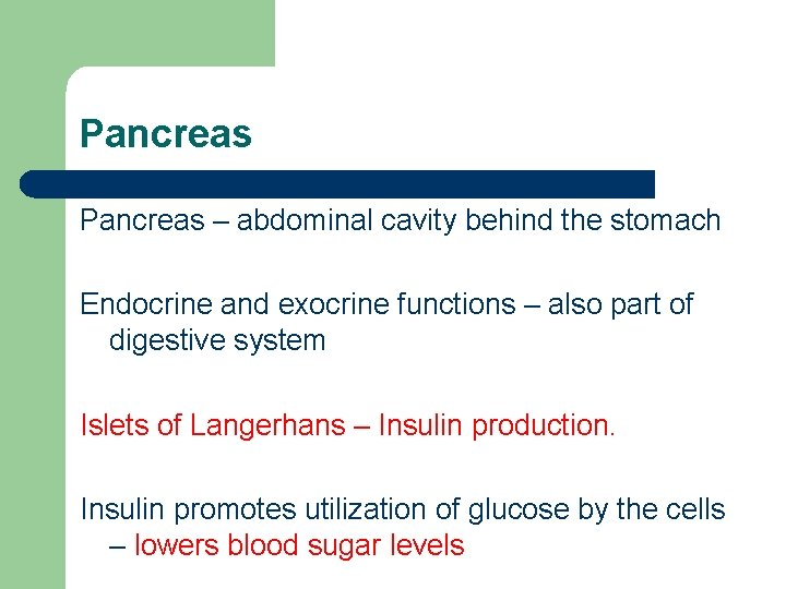 Pancreas – abdominal cavity behind the stomach Endocrine and exocrine functions – also part