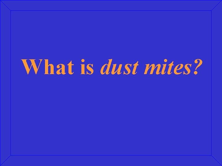 What is dust mites?