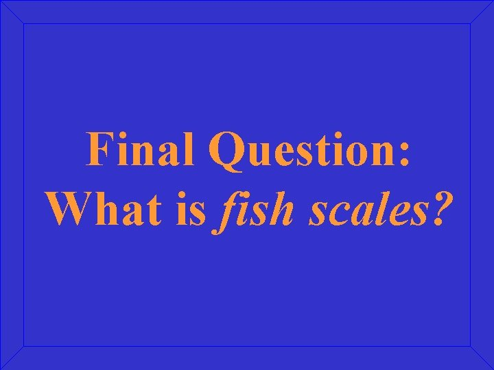 Final Question: What is fish scales?