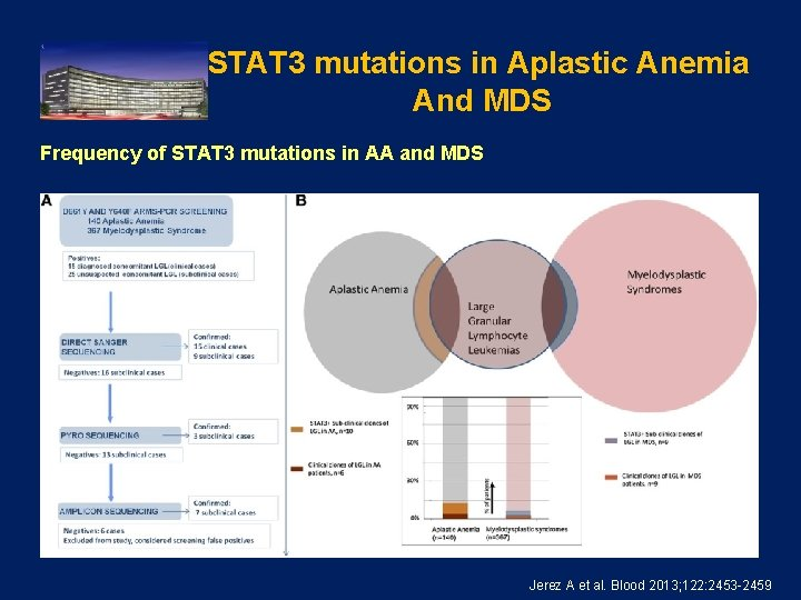 STAT 3 mutations in Aplastic Anemia And MDS Frequency of STAT 3 mutations in