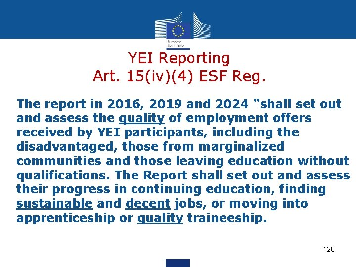 """YEI Reporting Art. 15(iv)(4) ESF Reg. The report in 2016, 2019 and 2024 """"shall"""