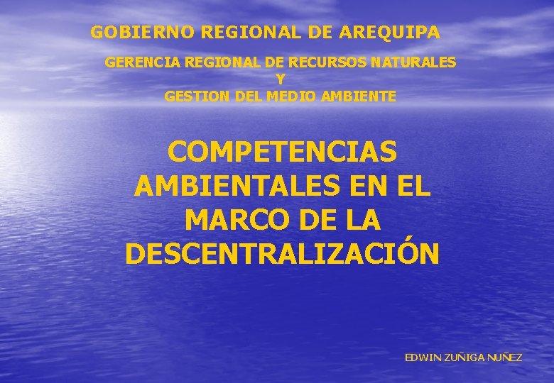 GOBIERNO REGIONAL DE AREQUIPA GERENCIA REGIONAL DE RECURSOS NATURALES Y GESTION DEL MEDIO AMBIENTE