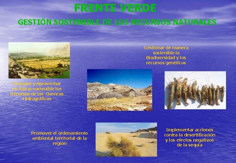 FRENTE VERDE GESTIÓN SOSTENIBLE DE LOS RECURSOS NATURALES Gestionar de manera sostenible la Biodiversidad