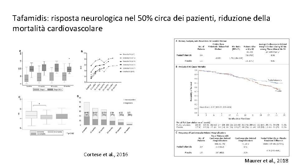 Tafamidis: risposta neurologica nel 50% circa dei pazienti, riduzione della mortalità cardiovascolare Cortese et