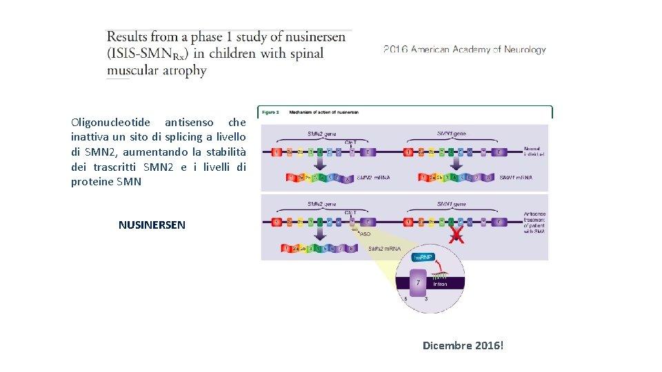 Oligonucleotide antisenso che inattiva un sito di splicing a livello di SMN 2, aumentando