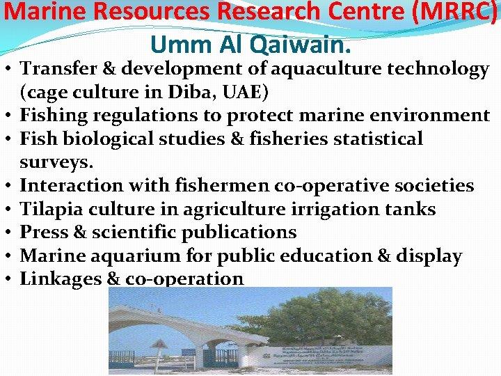 Marine Resources Research Centre (MRRC) Umm Al Qaiwain. • Transfer & development of aquaculture