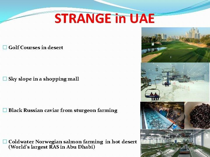 STRANGE in UAE � Golf Courses in desert � Sky slope in a shopping