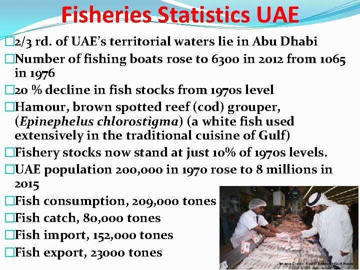 Fisheries Statistics UAE � 2/3 rd. of UAE's territorial waters lie in Abu Dhabi