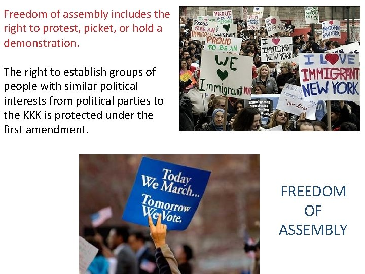 Freedom of assembly includes the right to protest, picket, or hold a demonstration. The