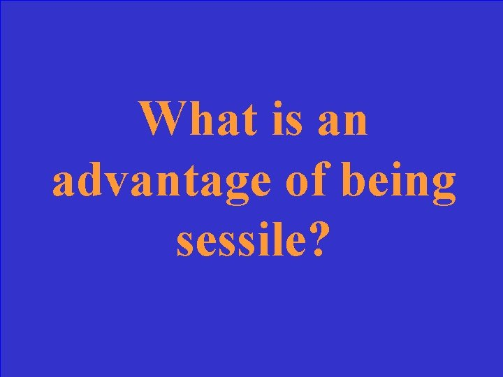 What is an advantage of being sessile?